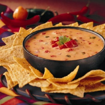 Hot, Cheesy Salsa Dip